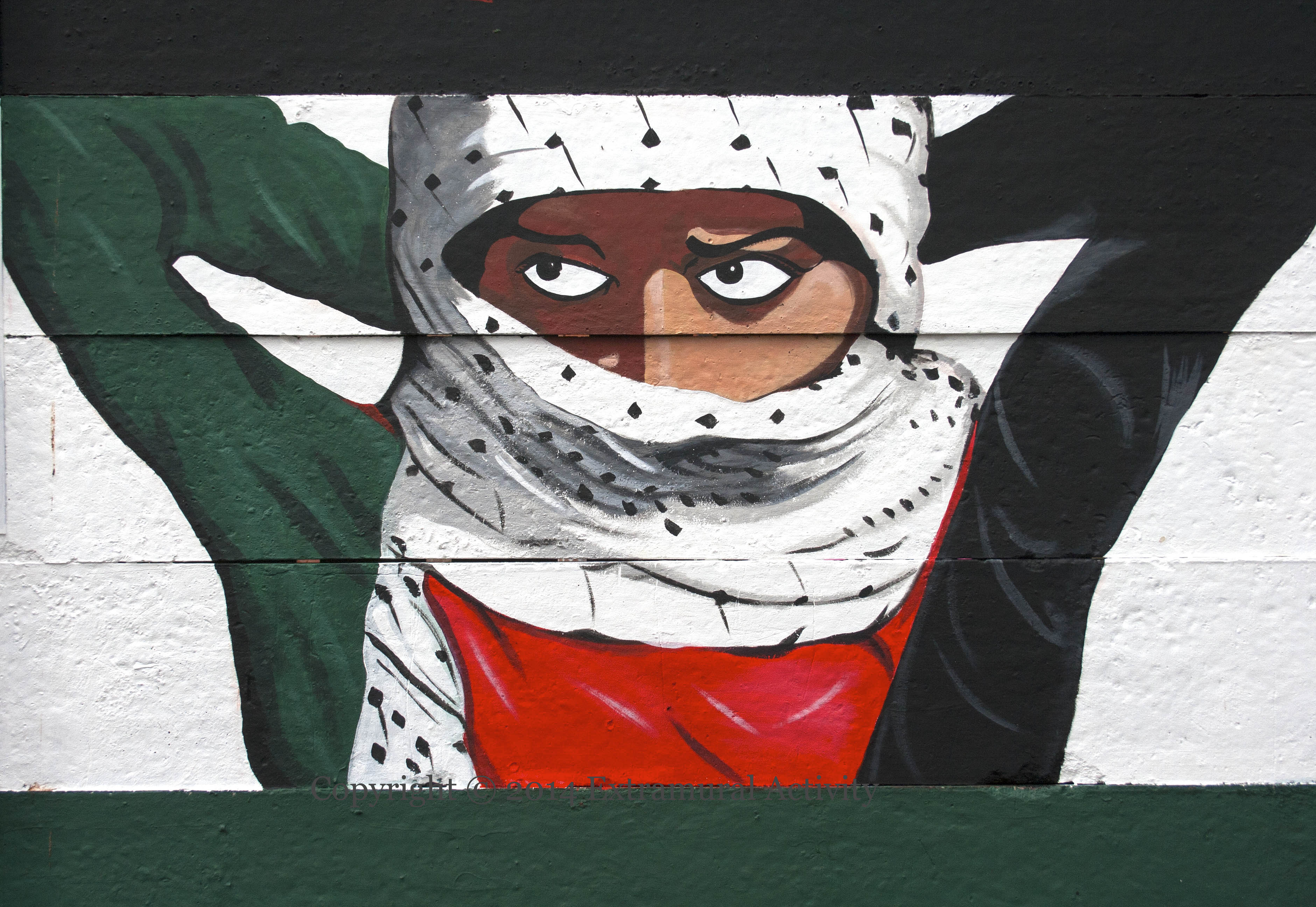 Made in palestine kufiya scarves as a symbol of for Extra mural meaning